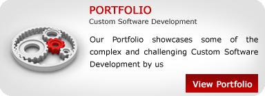 Custome-Software-Development-1